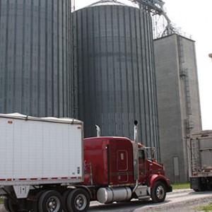 Services Grain Purchasing
